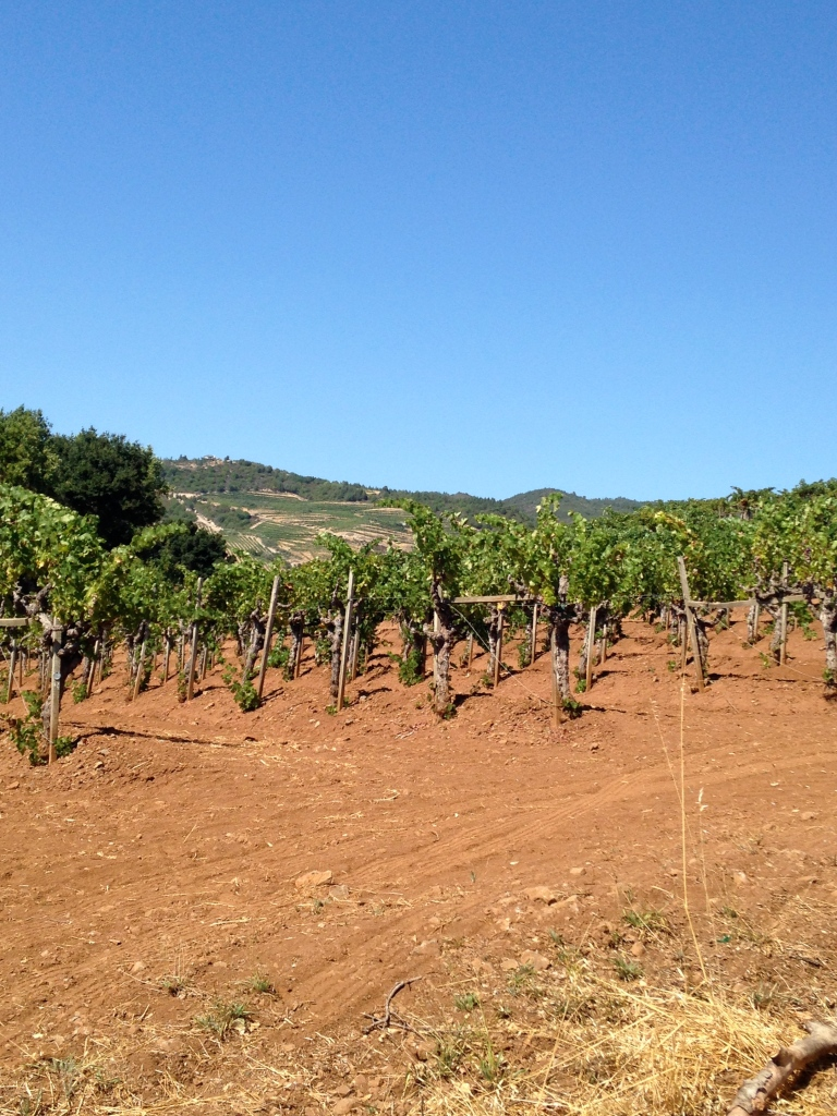 Red Soils up Moon Mountain